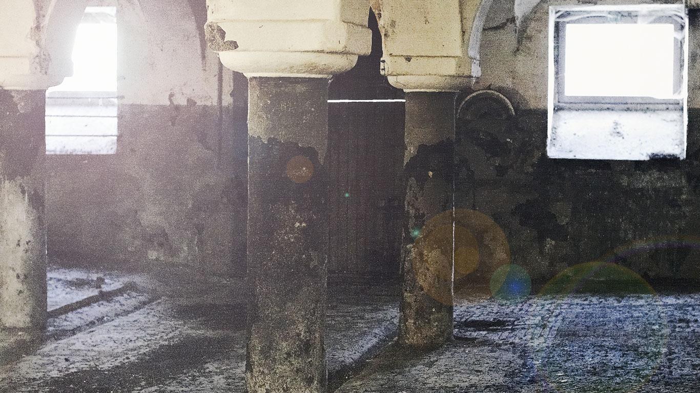 loft-wohnung-regensburg